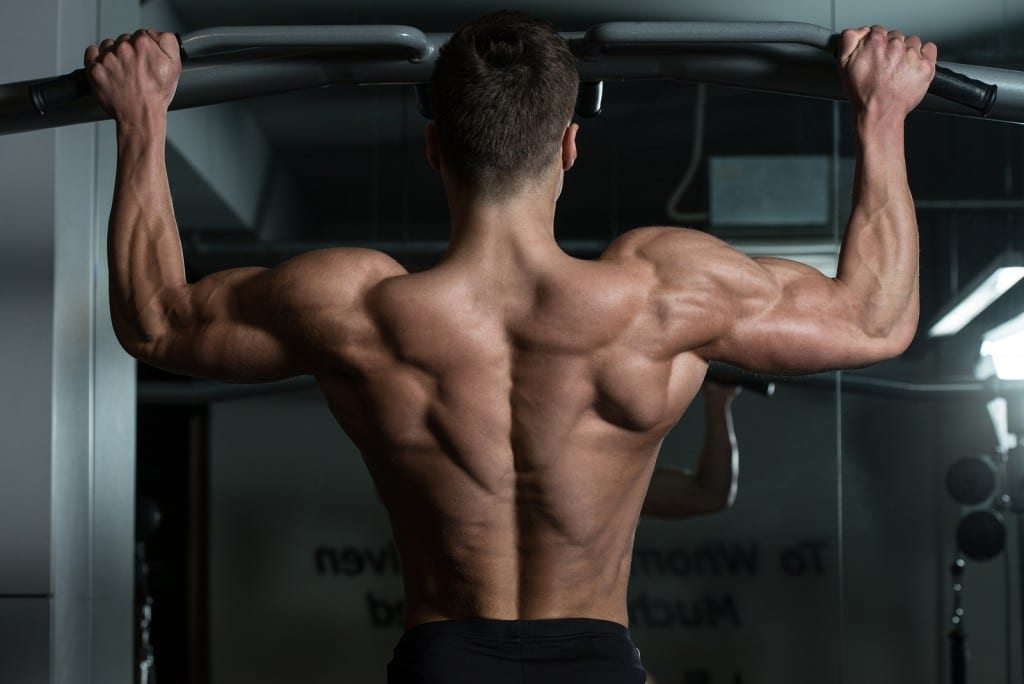 What Muscles Do Pull Ups Work? The Definite Pull Up Guide